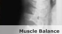 muscle-balance